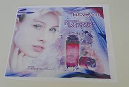 Flag Cloth banner trykt med 1,6 m (5 fot) eco solvent skriver WER-ES160 4