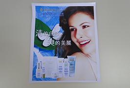 PVC-banner trykt med 3,2 m (10 fot) eco solvent skriver WER-ES3201