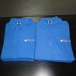 Polo skjorte tilpasset utskrift av A3 t-skjorte skriver WER-E2000T